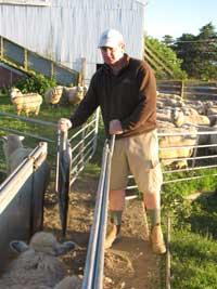 Craig Nelson - Livestock Agent, Wairarapa